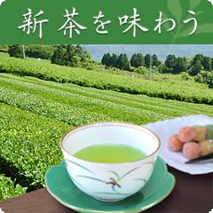 有田焼の香蘭社人気シリーズ