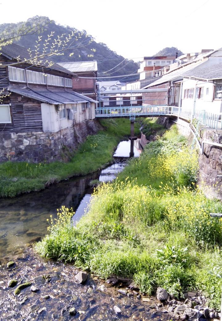 碍子工場を流れる川と菜の花