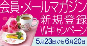 11メルマガ新規会員様特別プレゼント(550×297).jpg